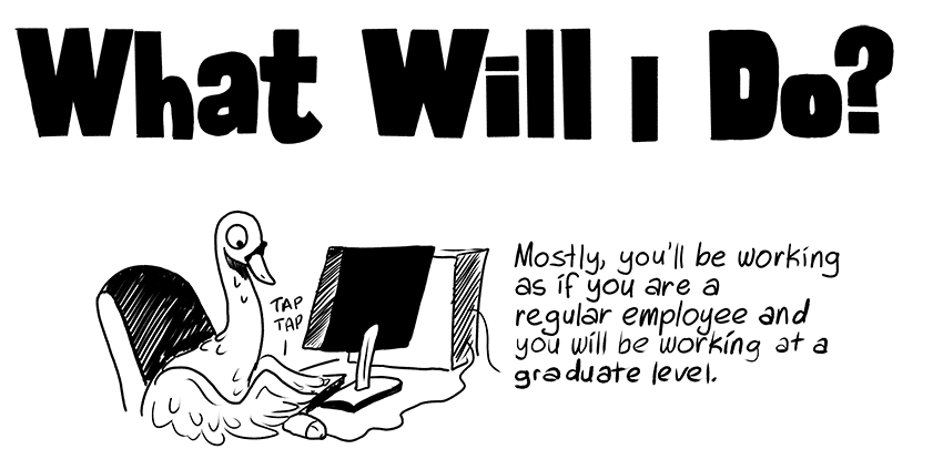 What Will I Do? - Mostly, you'll be working as if you are a regular employee and you will be working at a graduate level